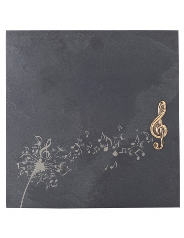 "Placheta piatra ""muzica"" bronz masiv"