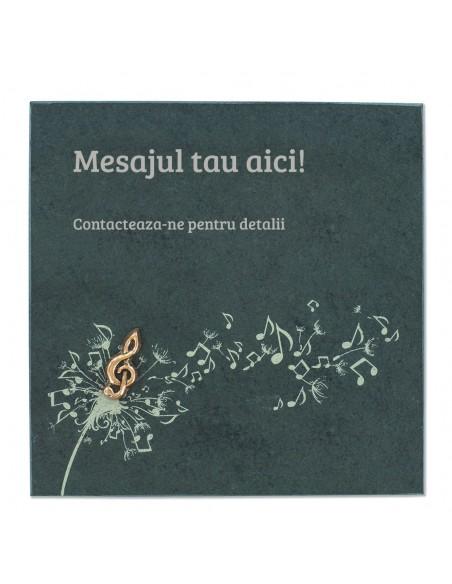 "Placheta piatra ""melodie"" bronz masiv"